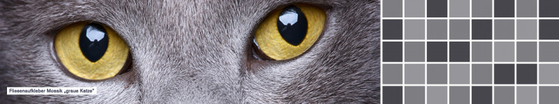 Fliesenaufkleber einfarbig Mosaik Graue Katze - PrintYourHome.de